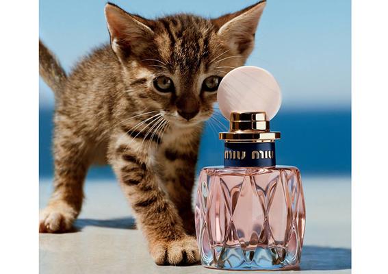 Miu Miu - 最粉嫩的狂放不羈 2018春季全新淘氣香氛「L'eau Rosée 粉色嬉遊淡香水」2/2上市