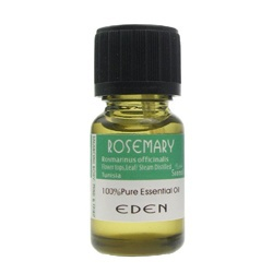 迷迭香精油(草葉類)  Rosemary