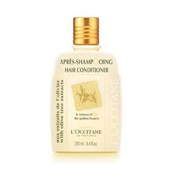 橄欖潤髮乳 Daily Conditioner