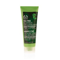茶樹淨膚調理磨砂膏 Tea Tree Blackhead Exfoliating Wash