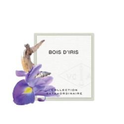暖暖鳶尾花 BOIS D'IRIS