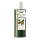 靈芝橄欖葉緊膚逆時乳液 Reish -Olive Leaf Anti-Aging Lotion
