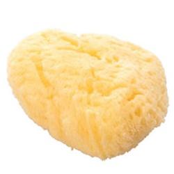 Chacott For Professionals 工具系列-天然海棉  Kaimen Sponge