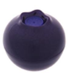 藍莓潤彩護唇膏