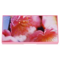 彩妝用具產品-2011粉櫻輕舞限定版粉餅盒 Compact Foundation Casespecial Decoration Edition