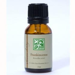 乳香 Frankincense / Boswellia carteri