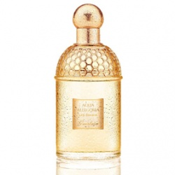 GUERLAIN 嬌蘭 香水系列-日光百合淡香水 Lys Soleia