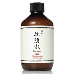 Yuan Soap 阿原肥皂 頭髮系列-月桃洗頭水