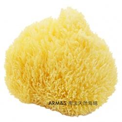 美體用具產品-南法天然海綿