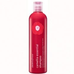 innisfree 洗髮-濟州山茶精華洗髮乳