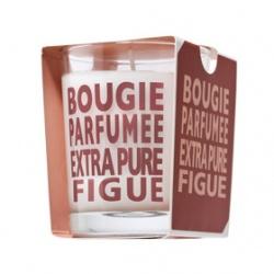 COMPAGNIE DE PROVENCE 愛在普羅旺斯 室內‧衣物香氛-無花果香水蠟燭