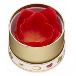 玫瑰迷你腮紅 FACE COLOR ROSE LADUREE MINI