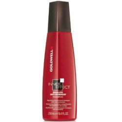 GOLDWELL 歌薇 洗髮-IE淨化抗屑洗髮精 Regulate Anti-Dandruff Shampoo