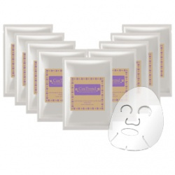 抗皺緊緻蠶絲精華面膜 Anti-Wrinkle & Firming Essence Silk Mask