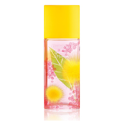 綠茶含羞草香水 Green Tea Mimosa Eau de Toilette Spray