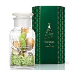 綠色聖誕心願滿滿聖誕樹香氛花