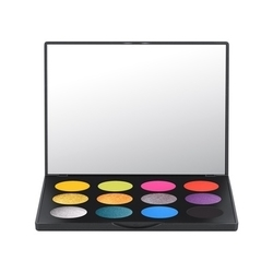 時尚專業12色眼影盤