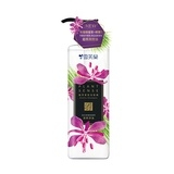 植萃香氛洗髮精(清爽淨油) Plant sense aroma shampoo- Anti Oil