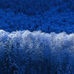 150x150 winter